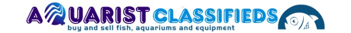 Aquarist Classifieds