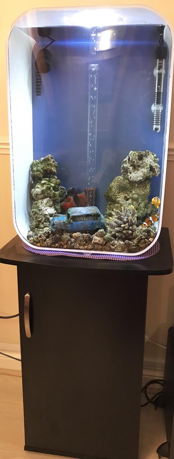 Fish aquarium manufacturers - 26 05 17