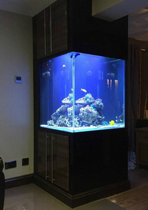 be classified as_Aquarium - Fish tank - Cabinet - Steel stands - Pelmets - Manufacturer - Brand new ...