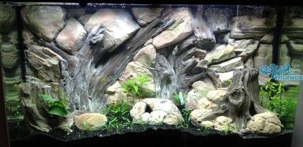 Aquarium Backgrounds Real 3d For Any Aquarium Or Viv At
