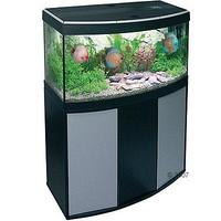 fluval vicenza 260 bow front aquarium at aquarist classifieds. Black Bedroom Furniture Sets. Home Design Ideas