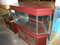 Clearance sale of second hand Aquariums stand and equipment .