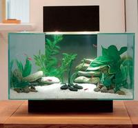 Aquarium Cleaning,Maintenance and supplies including Fish and Plants