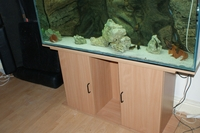 Stunning 4 10 inches Aquarium and Cabinet with A life Like Rock Background Filter