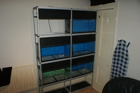 Rack of 6 x 2ftx1ftx1ft tanks on Aluminium Rack (SOLD)