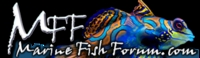 the UKs Premier Marine Fish & Reefkeeping Forum