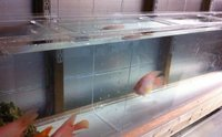 High Quality Acrylic Aquarium Dividers