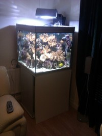 "27"" CUBE FULLY LOADED  JOB LOT top setup OFFERS"