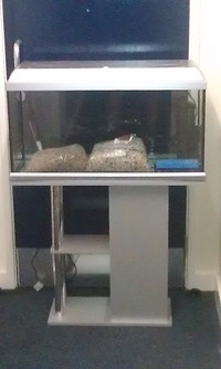 COMPLETE SET UP FOR SALE - SMALL TANK