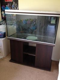 Rena 4ft aquarium for sale at aquarist classifieds for Aquarium rena