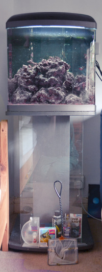 90l betta lifespace nano 90 litre marine aquarium tank full setup with live rock and fish 125. Black Bedroom Furniture Sets. Home Design Ideas