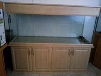 Maple Aquatics Dereham Near Norwich Norfolk