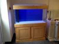 Custom aquariums and real wood cabinets