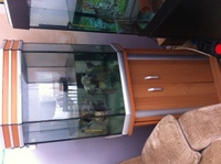 Corner fish tank for sale 100 sold at aquarist classifieds for Corner fish tank for sale