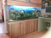 5ft Cabinet fish tank for sale complete set up