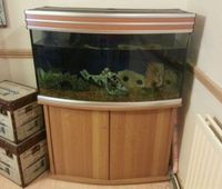 100 gallon fish tank for sale uk or salt water aquarium for 10 gallon fish tank heater