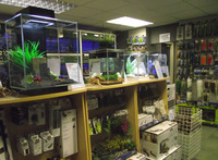 Bradshaws Direct - York: Freshwater Tropical and Coldwater Community Fish