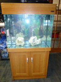 Stunning Aqua One Regency 80 Aquarium 180l 80x70x40 In Oak