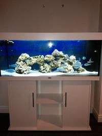 juwel juwel rio 240 pour aquarium ou bassin aquatique. Black Bedroom Furniture Sets. Home Design Ideas