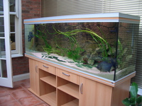 Rena Fish Tank For Sale. �0.