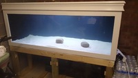 6x3x2 FISH TANK/AQUARIUM EVERYTHING NEEDED  1150LITRES  LARGE