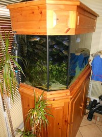Fish tank & Cabinet 80 Gallons 360 litres