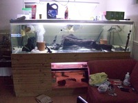 Large acrylic aquarium for sale 1500 liters 7x4x2