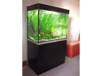 Fluval Profile 850 stunning aquarium with Matt black base unit and many accessories