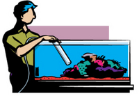 Aquarium maintenance services for fresh or salt water