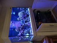 Aquaone reef 300 white complete set up �00s worth. Excellent condition