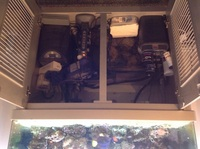 4x2x2 coral reef aquarium, full set up , fish , inverts, live rock