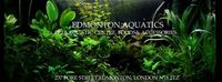 EDMONTON AQUATICS STOCK LIST - FEBRUARY - NORTH LONDON AQUATIC SPECIALISTS