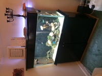 Complete marine aquarium and livestock or breakdown