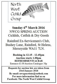 The North West Cichlid Group Auction is on the 6th March 2016.