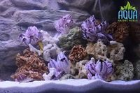 22 KG OCEAN ROCK, FOR MALAWI ,CICHLID ,FISH TANK AQUARIUM �