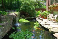 FISH POND CLEANING SERVICE WORCESTERSHIRE AND WEST MIDLANDS.