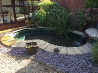 Complete 800g pond set up for sale at aquarist classifieds for Atlantis koi pond