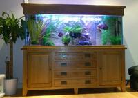 as new 6ft aqua oak aquarium fish tank for sale bargain ...