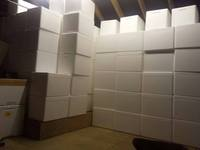 Medium Polyboxes - �each