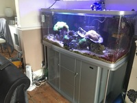 4 Foot Marine Fish Tank - complete setup. Only �0. MUST GO