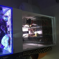 Clearseal Reefspace 500 ( full reef set up ) �0 ono