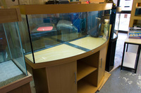 4 ft Jewlel Vision Bow front tank for sale.nOW �0.00