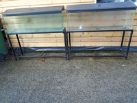 2 x 4 Ft Clear Seal Tanks, Crown Covers and Stands