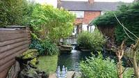 surrey fishi rescue and pond maintenance-07764457896