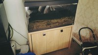 FLUVAL ROMA 200 LITRE WITH STAND �0 ONO.