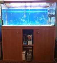 230L fishtank wiith lights heater and extras �0