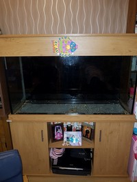 4ft x 2ft x2ft fish tank and cabinet