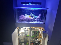 ND aquatics full marine set.up with extras. Skimmer sump wavemakers jebao TMC