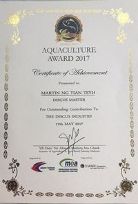 :: AWARD WINNING MARTIN NG MASTER DISCUS BREEDER. DURHAM DISCUS - THE No1 DISCUS SPECIALISTS IN NORTH EAST ENGLAND :