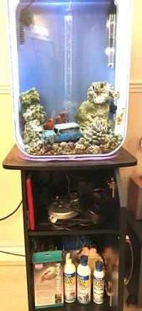 Biorb Marine Tank - bargain at �0